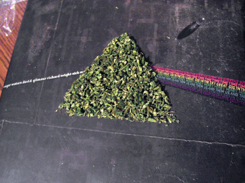 dark side of the moon, pink floyd, weed
