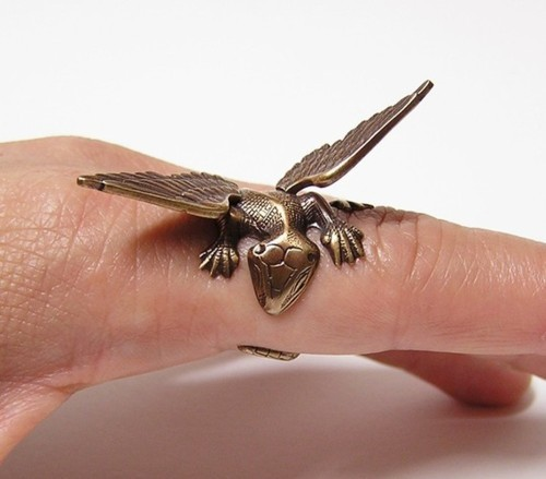 fashion, lizard, photography, rings, wings