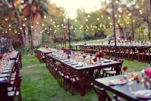 grass, lights, pretty, wedding