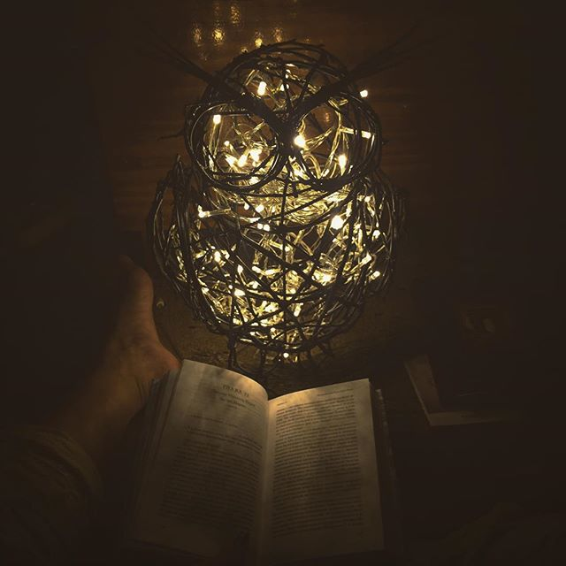 book, christmas, light and new year