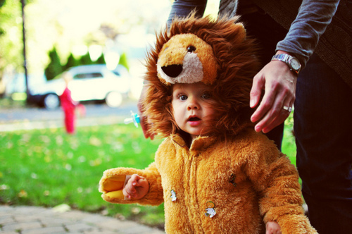 baby, bear, bebe, boy, cute