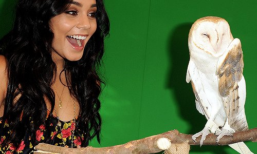 baby v, beautiful, coruja, smile, vanessa hudgens