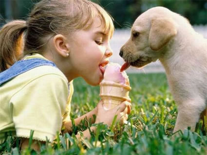 bonito, cachorro, children, crianca, dogs, filhote, icecream, kids, pretty, puppy, sorvete