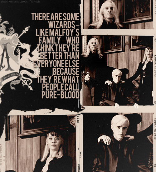 amazing, death eaters, draco, epic, family