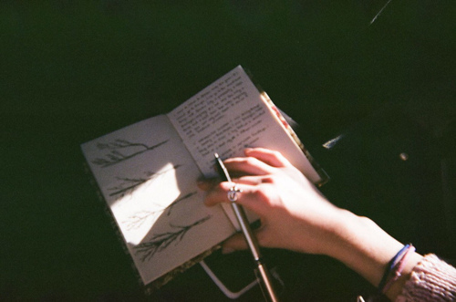 art, diary, hand, journal, photography