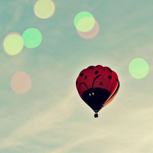 balloon, cute, ladybug, sky