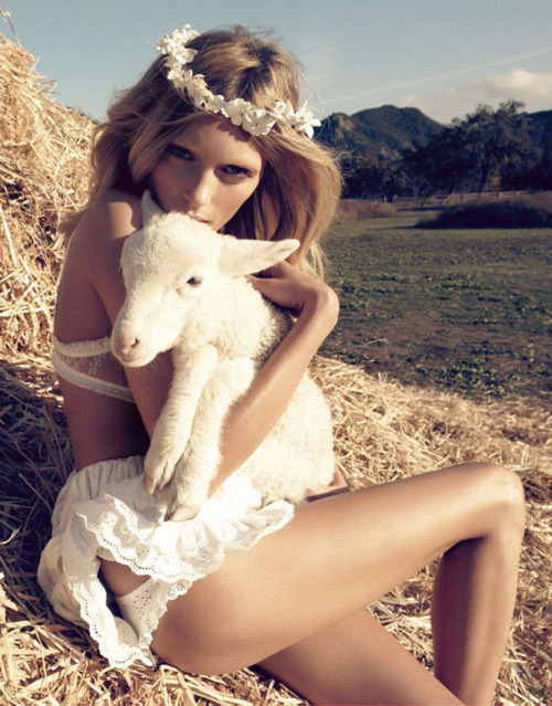 boho, fashion, flowers, girl, hay, hippie, lamb, model, nature, peace, pretty, skinny, thin, thinspo, vegan, vegetarian, white