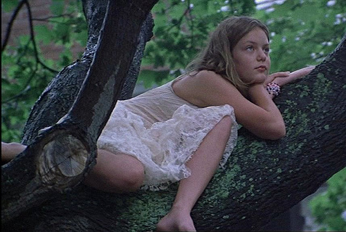 climb, faith, girl, hope, stare, the virgin suicides, trees, wish