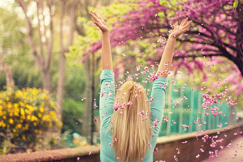flowers, girl, pink, pretty, spring