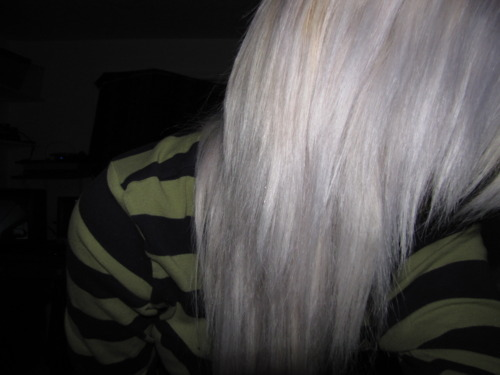 gray hair, grey hair, hair, long hair, purple hair, silver hair, white hair