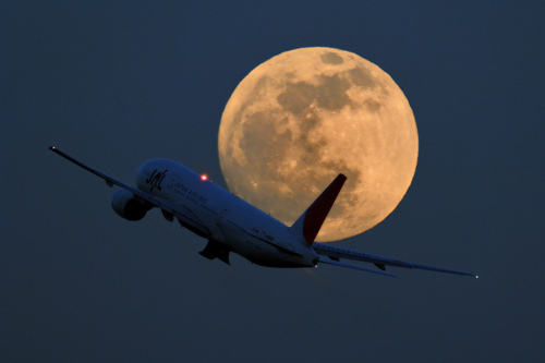 airplane, moon, night, photography, plane, pretty, sky