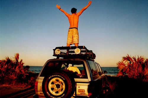 beach, boy, car, free, summer