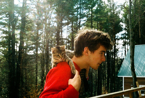 beautiful, boy, cat, cute, forrest