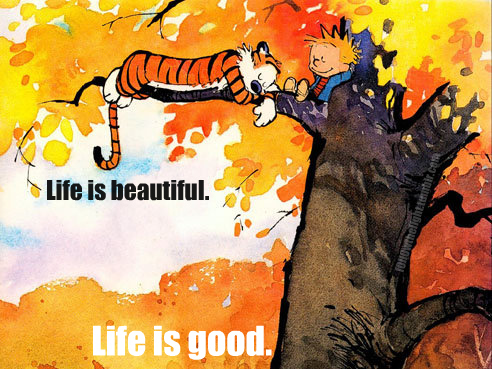 beautiful, calvin and hobbes, good, life, living