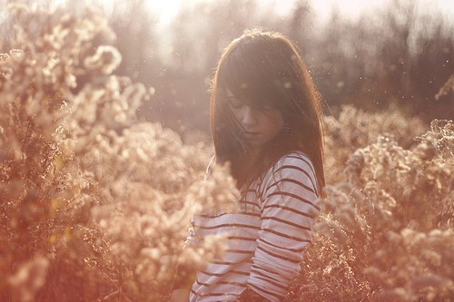 beauty, fashion, field, girl, light, model, nature, photography, stripes, sun, sunlight, sunshine