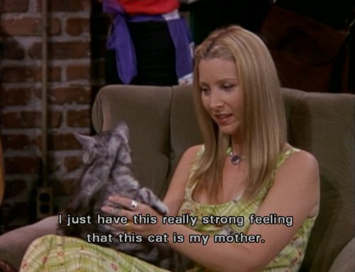cat, cute, friends, lisa kudrow, phoebe, phoebe buffay