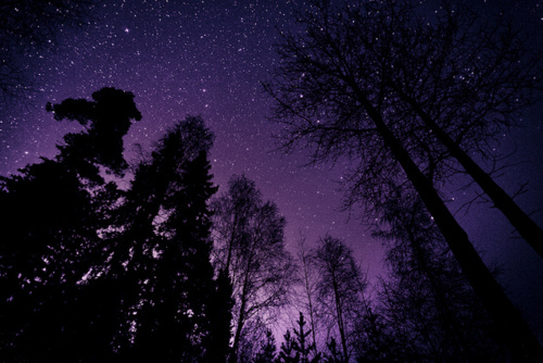 nature, night, night sky, photography, purple