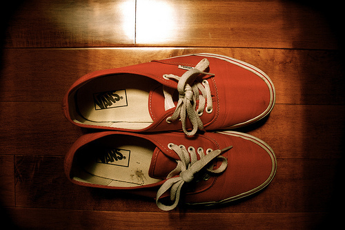 perfect, photography, shoes, vans, vans off the wall