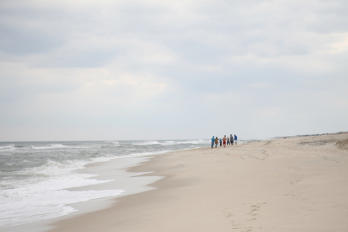 beach, blue, dunes, group, ocean