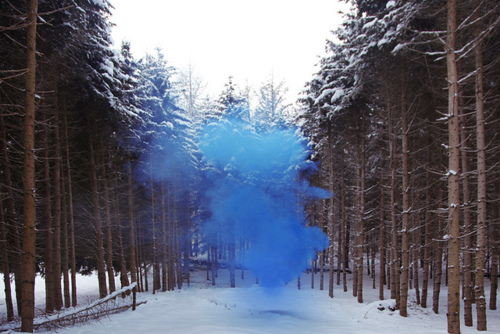 blue, forest, magic, mist, smoke