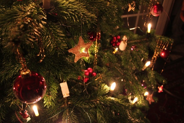bokeh, christmas, christmas tree, december, globe