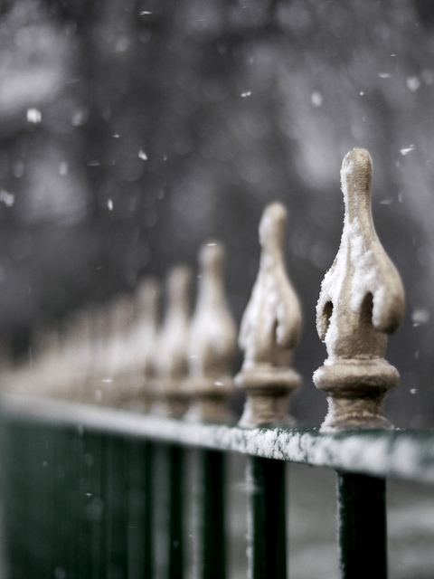 bokeh, cold, fence, snow, winter