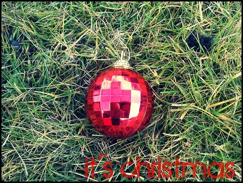 christmas, december, grass, green, holiday, made by marcsi, pink, red, warm, white