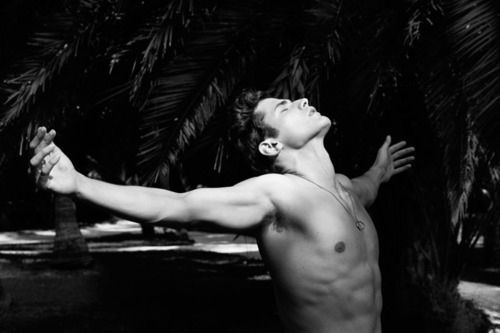 hot guy, palm leaves, stretching