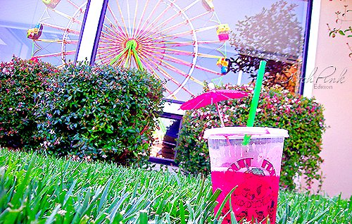 amusement park, biatch, colors, drink, separate with comma, summer