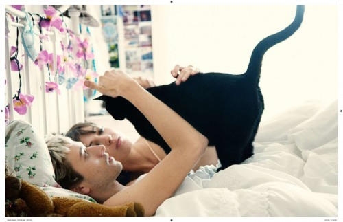 bed, boy, cat, couple, cute