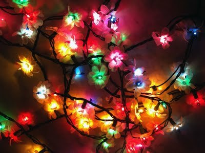 christmas lights, crafts, diy, fairy lights, flower lights