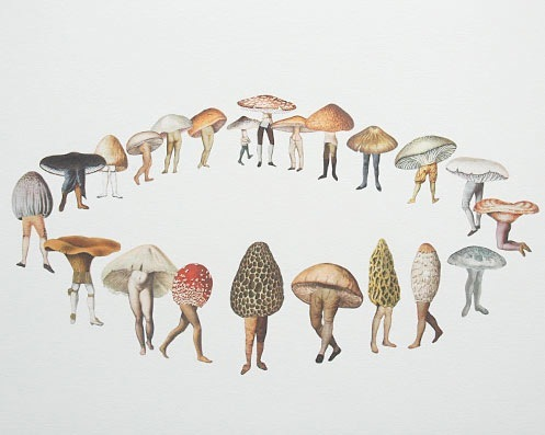 color, colourful, drawing, graphic, hongos, illustration, illustrations, interesting, mushroom, print