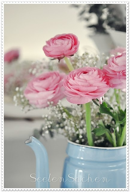 cute, flowers, light blue, photography, roses, shabby chic