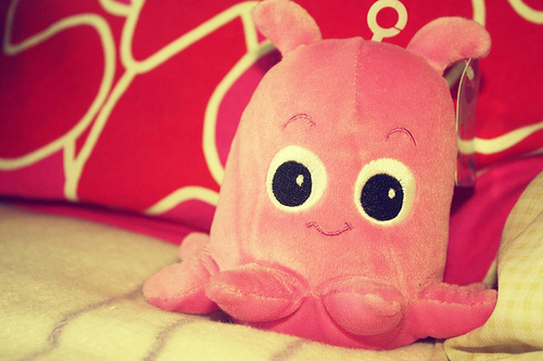 cute, photography, pink, stuffed, toy
