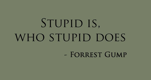 forrest, forrest gump, gump, quote, stupid