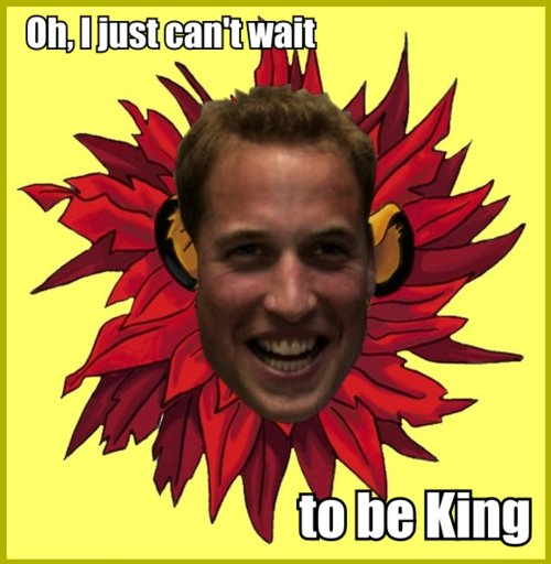 funny, guy, king, lion king, photography, prince, prince william, royal wedding, william
