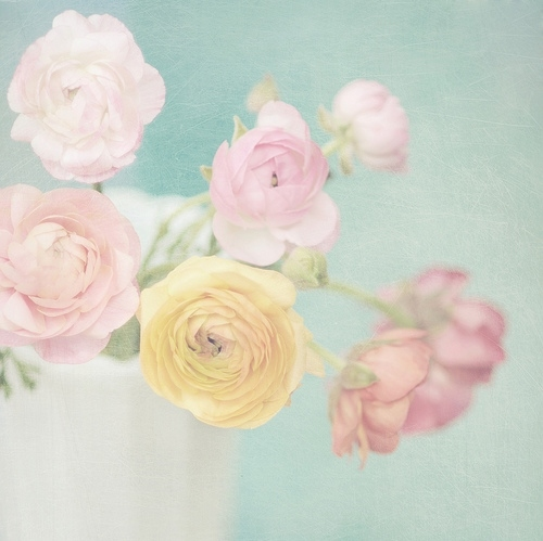 adorable, cute, flowers, glamour, kaleidoscope, nature, pastel, pink, pretty, secret, sky, sweet, yellow