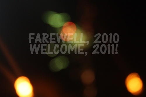 2010, 2011, farewell, new year, newyears