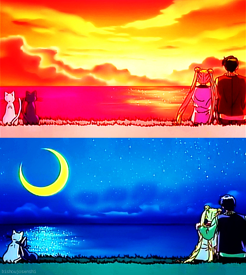 Love Cats Moon Anime Cats Couple Love