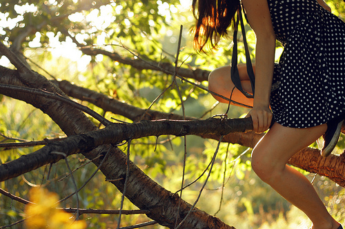 black dress, branches, bubbles, dots, dress, fashion, girl, leaves, legs, light, photography, tree, white spots