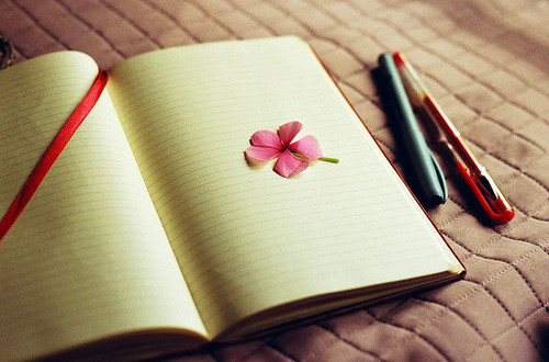 flower, notebook, pen, petal, vintage