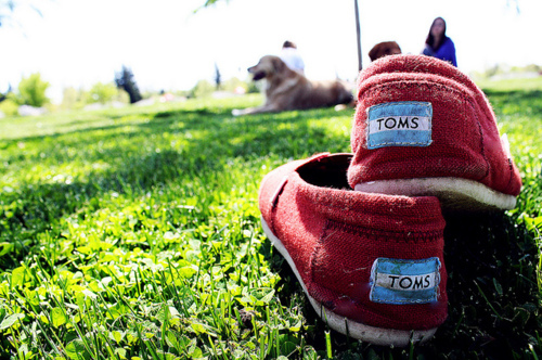 grass, photography, red, red toms, shoes, toms