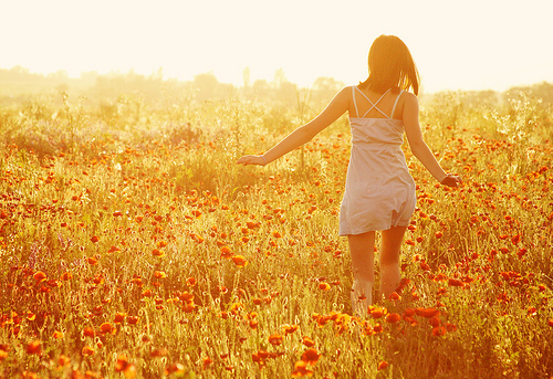 beautiful, flowers, girl, nature, sunshine