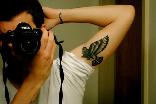 bird, boy, camera, green or blue, mathew, nikon, photography, tattoo