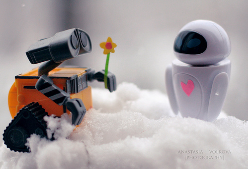 cute, flower, love, robots, wall-e