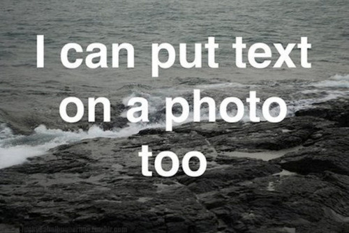 funny, ocean, text, typography, words