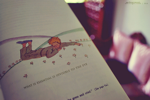 book, childhood, cute, quote, the little prince