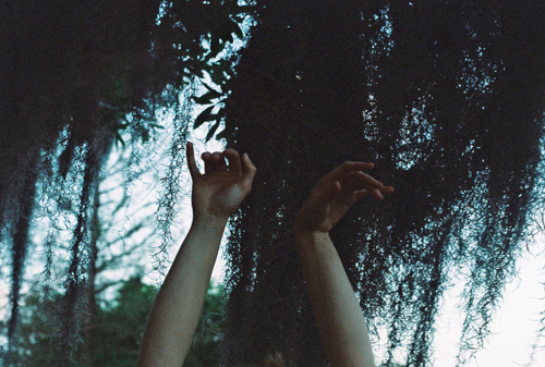 air, arm, arms, boy, cute, girl, vines, pretty, happy, nature, secret twin, sky, trees, model, hipster, hand, hands