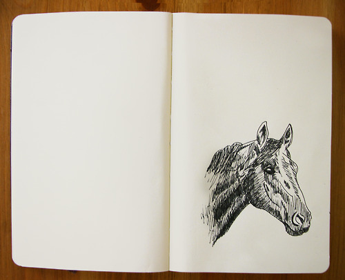 beautiful, cute, doodle, drawing, horse, illustration, journal, moleskine, pen, photography, pretty, sketch