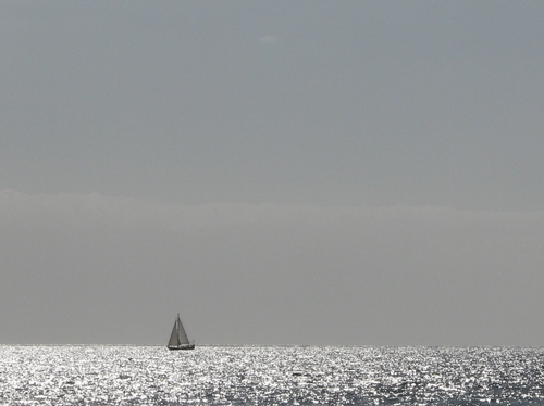 blue, heaven, sailboat, sailing, sea, shimmering, sky, water, white